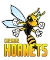Service logo for Cheshire Hornets Basketball Club